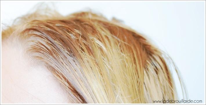 Comment faire un bain d'huile pour ses cheveux 1