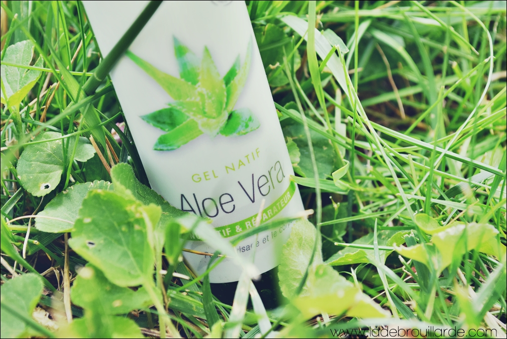 Gel Natif Aloe Vera Aroma Zone